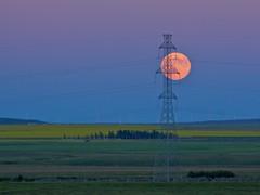 Full Moon Rising (Chris Saulit) Tags: moon canada tower luna fullmoon explore moonrise alberta electricity prairie transmission windfarm explored
