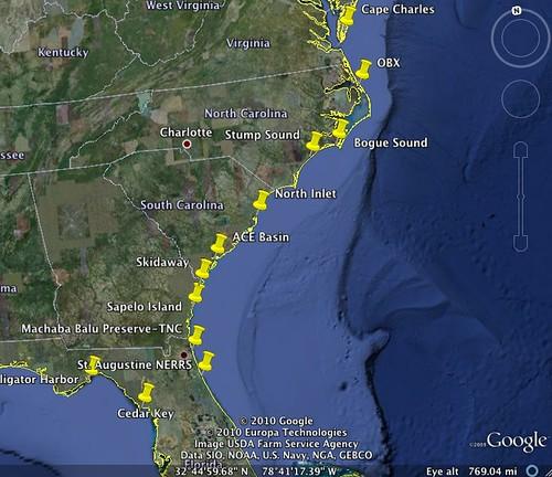 Biogeographic oyster study