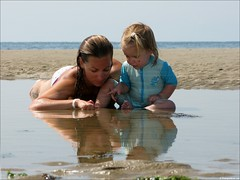 On the beach (Rudgr.com) Tags: sea reflection beach water netherlands kids children point kid sand child starfish nederland noordzee shrimp zeeland sealife northsea enjoy learning critters crabs pointing learn tidalpool 2010 familygetty2010