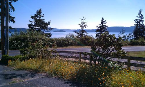 Samish Island View
