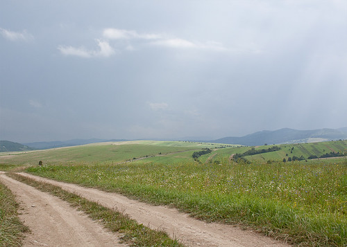 The Road to Carpathians
