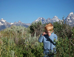 Benjamin the Explorer (elayne_crain) Tags: meadow benjamin wyoming grandtetons