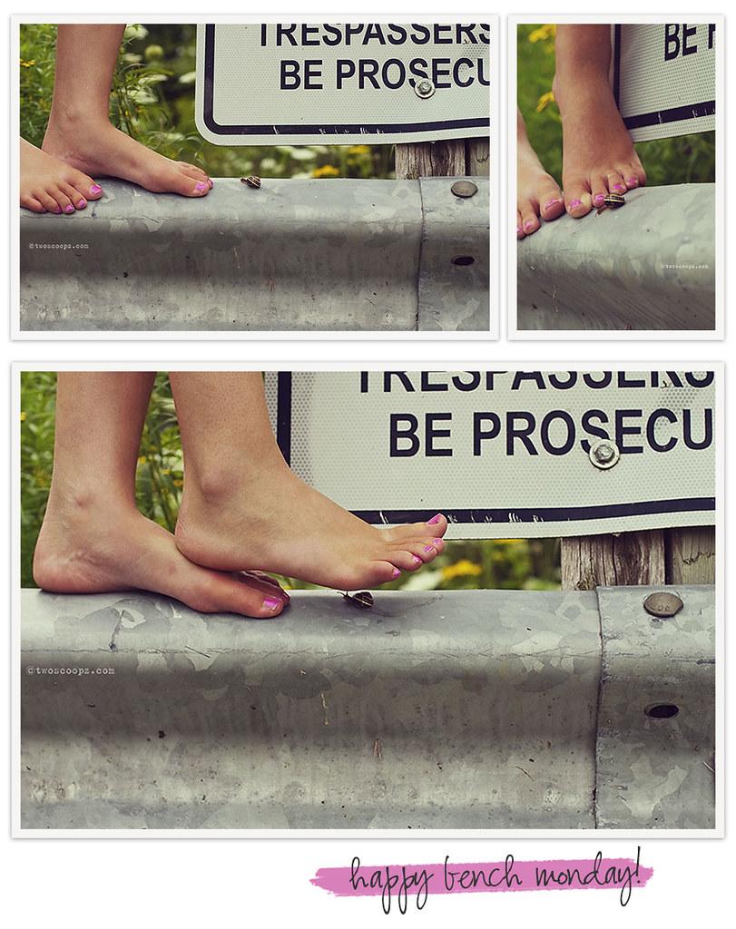 No Trespassing 214/365