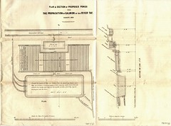 Fishings propagation plan, 1853 (P&KC Archive) Tags: industry scotland fishing cent perth archives 19th ecsochistory historicaldocument workingarchive