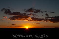 Sunset (whitworth images) Tags: sunset sky sun nature beautiful yellow clouds landscape evening nationalpark horizon australia nsw newsouthwales outback sturtnationalpark