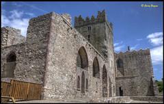 Tintern Abbey Wexford (GarryBoggan) Tags: abbey wexford hdr tinternabbey tintern saltmills nikond90 garryboggan