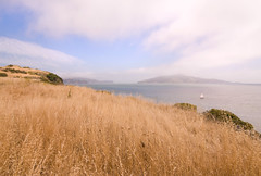 Angel Island (greg.gibb) Tags: sf sanfrancisco california ca blue summer usa seascape nature grass fog sailboat landscape golden bay boat nikon pacific tokina angelisland 1116 d80 greggibb