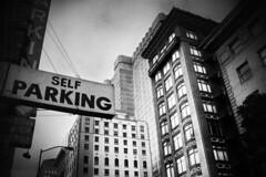 Human Parking..