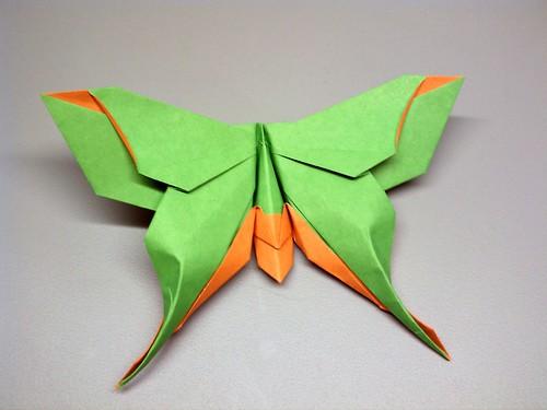 Mudarri Luna Moth