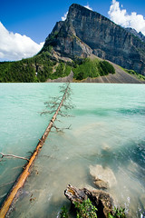 Look! Glacier Water! (Lumagent Morple) Tags: mountain canada tree nikon wideangle alberta banffnationalpark stmaryslake glacierwater nikond700 nikon14mmf28d