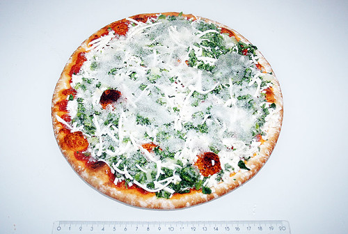 04 - Pizza gefroren