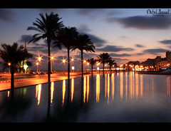 Sunrise over Alexandria [Explored] (Michel Assaad) Tags: trees water alexandria sunrise canon reflections eos rebel lights kiss long egypt trails palm shutter x4 bibliotheca alexandrina 550d t2i