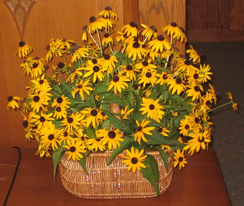 black-eyed Susans bouquet