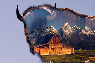 The Essence of Grand Teton National Park
