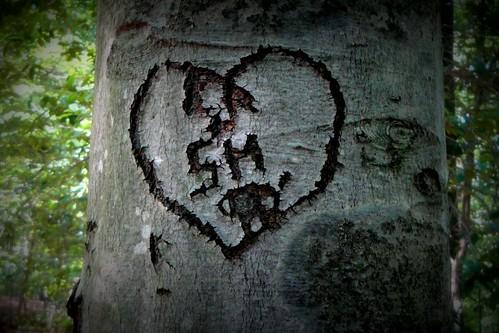Burke Lake heart