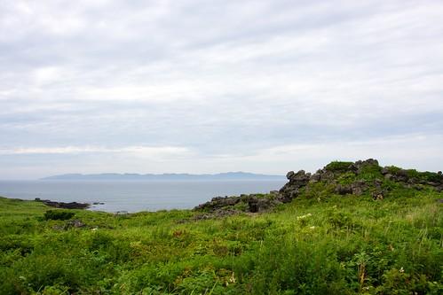 礼文島を眺める
