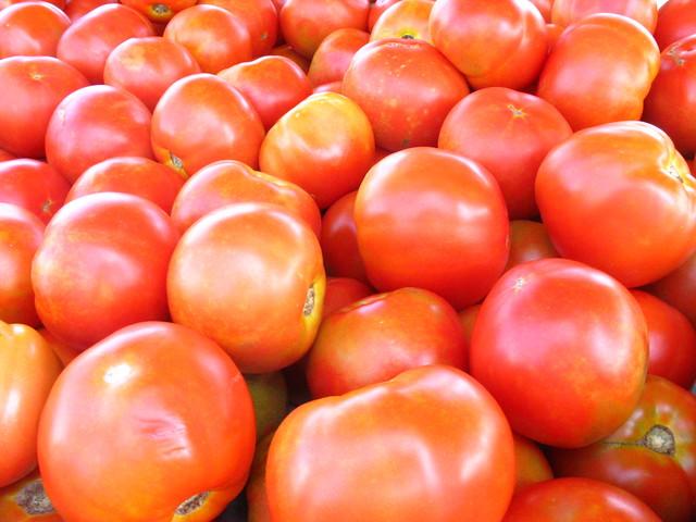 Tomatoes inYorktown