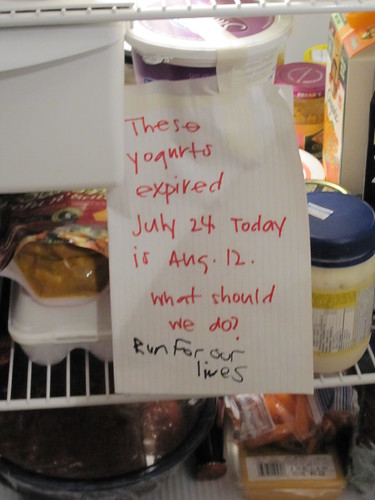 These yogurts expired July 24 Today is Aug 12. What should we do? Run for our lives