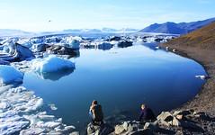 (Jaana-Marja) Tags: sky people mountains bird ice water iceland lagoon glacier icecubes jkulsrln glacierlagoon vatnajkull saariysqualitypictures
