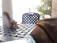 Study buddy getting a lil forward