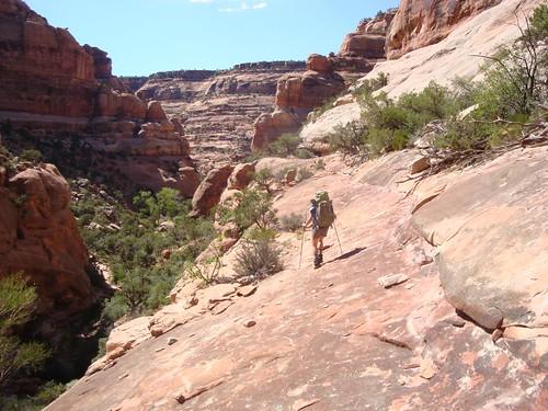 trail, what trail?