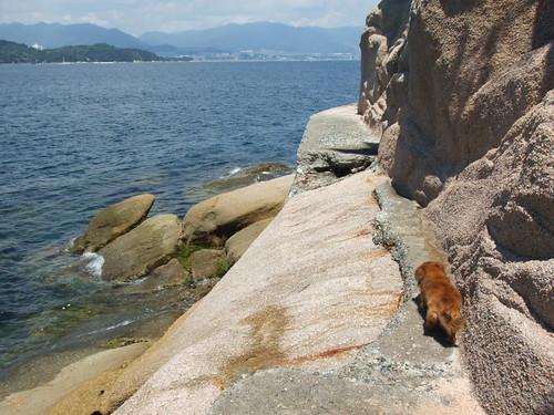 絵の島 広島 写真5