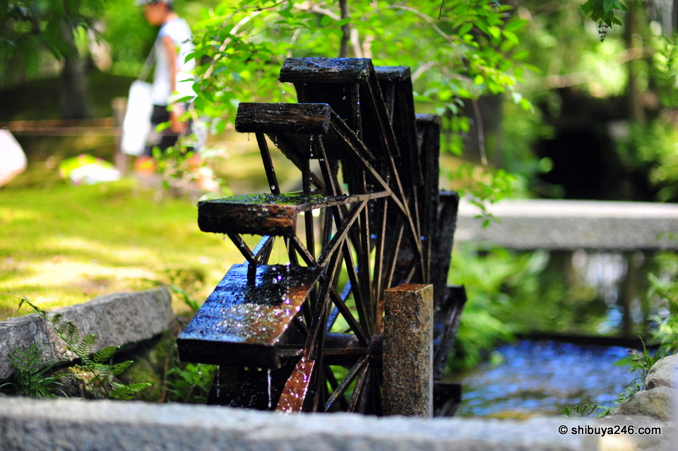 An old water wheel looks very peaceful
