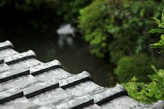 #3Naoya Shiga former house#3 (sunuq) Tags: rain japan canon tile eos  nara shiga  naoya  ef24105mmf4lisusm   5dmarkii