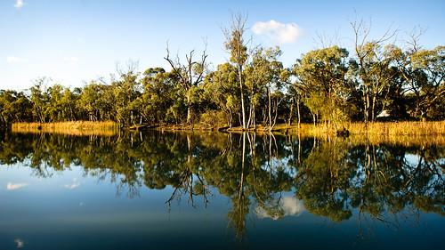 Mirror Image at Kings Billabong