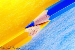 Blue & Yellow (||~  ) Tags: blue blur color canon eos sharp sharpen coulor     feras            1000d alfuraiji