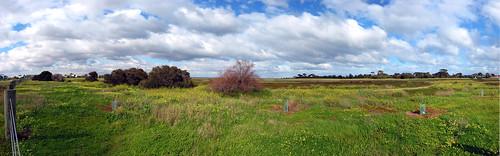 Altona Coastal Park A