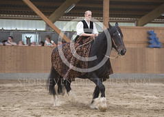 DSC_5476 (sporteventpictures) Tags: horse shire pferde shirehorse