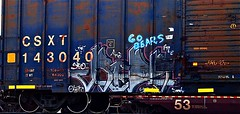 Ridso (mightyquinninwky) Tags: railroad rot train graffiti painted sandy tracks railway railcar rails boxcar freight rid gobears rids sfe trainart rollingstock fr8 railart spraypaintart freightcar movingart oser boxcarart freightart taggedboxcar paintedboxcar ridso sfek fple paintedrailcar paintedfreight taggedrailcar taggedfreight