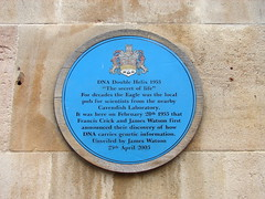 Photo of Francis Crick and James D. Watson blue plaque