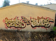 Reks Bugs (Your Team) Tags: graffiti bugs um hcm 86 tfl reks idc