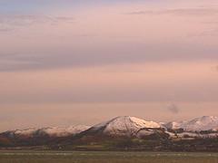 White Skirted Snowdonia
