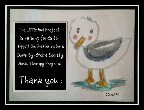 The Little Gull Project