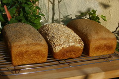 bread loaf - bread making machines
