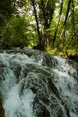 Water (adolgov) Tags: travel lake green water waterfall europe turquoise croatia plitvitcelakes