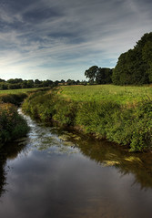 Newry Canal (Glenn Cartmill) Tags: uk trees ireland wallpaper irish nature water canon river landscape scenery photos unitedkingdom glenn august northernireland 2010 ulster nireland armagh desktopbackground portadown 500d riverbann countyarmagh cartmill windowsbackground coarmagh osxbackground newrycanal picturesofireland portadownarea moyallan glenncartmill portadownphotos portadownphotography