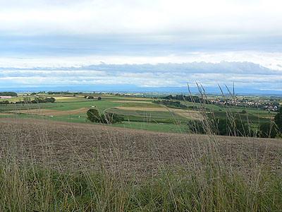 plaine d'Alsace.jpg