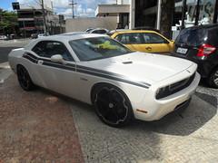 DODGE CHALLENGER R/T (João Paulo Fotografias) Tags: car brasil muscle dodge rt challenger goiânia supercars exótics