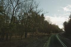 (Przemyslaw.Stroinski) Tags: road trees light art clouds forest landscape photography drive escape artistic ground line pines 40 asphalt sunnyday