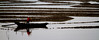 388 Row , row , row your boat--Xiapu , Fujian Province , China (ngchongkin) Tags: china niceshot harmony showroom fujian soe shiningstar nationalgeographic musictomyeyes favoritephotos zafiro hiddentreasure beautifulshot superphotographer mywinners peaceaward avpa flickraward flickrbronzeaward crystalawards xiapu heartawards diamondstars flickrsspecial flickrsun colourartawards flickridol flickrestrellas brilliantphotography thebestshot highqualityimages spiritofphotography 469photographer grouptripod artofimages angelawards contactaward ablackrose mycivilization flickrsgottalent bestpeopleschoice unicornawards zodiacawards divinecaptures fabulousplanetevo goldstarawardlevel1 flickrbronzetrophy
