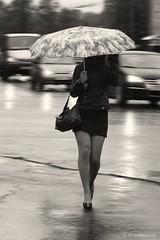 (Aleksanter) Tags: girl umbrella rainy supershot blackwhitephotos abigfave anawesomeshot flickrdiamond bestcapturesaoi mygearandmepremium