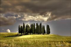 Val d'Orcia ......6 - i cipressi (leon.calmo) Tags: canon nuvole siena toscana valdorcia hdr paesaggio colline ohhh boschetto fiatlux cipressi squiricodorcia eos50d bellitalia leoncalmo