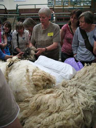 Fleece sorting demonstration