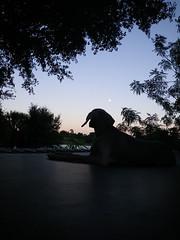 moonrise at sunset (saikiishiki) Tags: trees sunset summer dog moon lake love silhouette night dark relax evening warm long wind watching peaceful trampoline days weimaraner moonrise gradient rise uncropped weim mukha sooc thelittledoglaughed