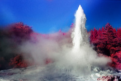 New Zealand Lady Knox Geyser (kgartner) Tags: newzealand film 35mm kodak infrared geyser wonderland geothermal waiotapu ladyknox eir