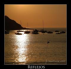 Reflejos (Mancusso2002) Tags: costa sol marina mar barcos reflejo gaviota anochecer